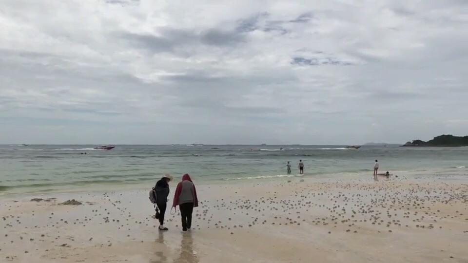 ผู้ประกอบการท่องเที่ยวโอดแพลงก์ตอนบลูมหน้าอ่าวเกาะล้าน ถล่มซ้ำเศรษฐกิจท่องเที่ยว